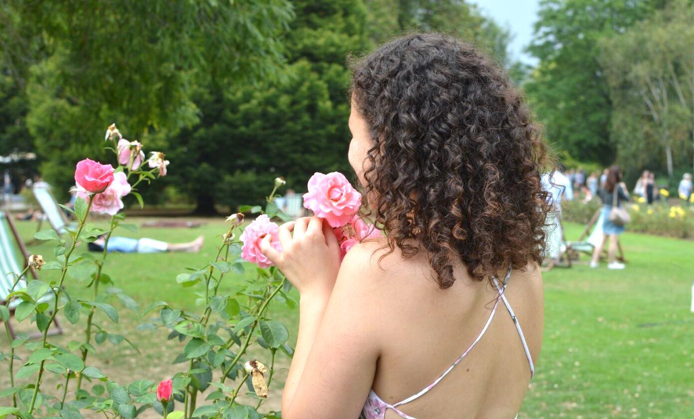 viktoria-a-tender-rose